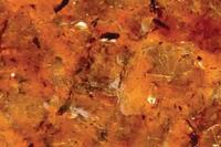 Acrilex Acriglas Minerals