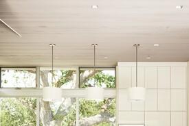 Linear Kitchen Blurs Indoor/Outdoor Divide