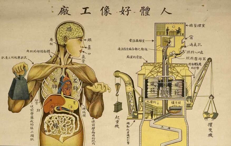 "Chinese public health poster depicting the human body as a factory, 1933, from ""Are We Human?, 3rd Istanbul Design Biennial."""