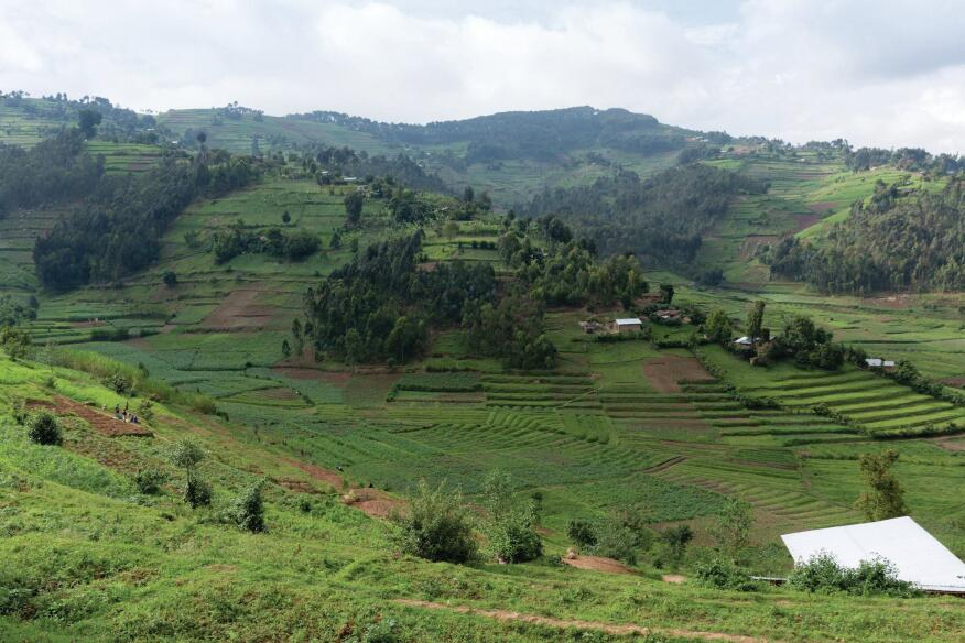 The terraced landscape of the hospital site in Butaro.
