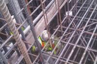 21st Century Concrete Construction, Cleveland