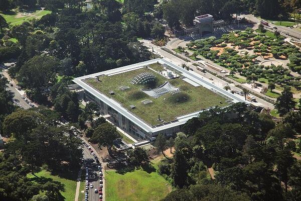 California Academy of Sciences, 2000–08.