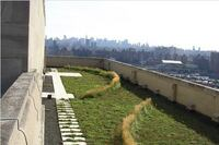 The Bronx Green Roof Demonstration Project/New York