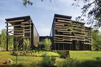 Lakefront House Goes Au Naturale
