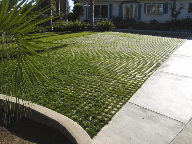 Soil Retention Drivable Grass