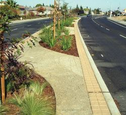 A colored pervious streetscape in California.