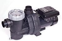 Professional Series Variable-Speed Pump from Raypak Inc.