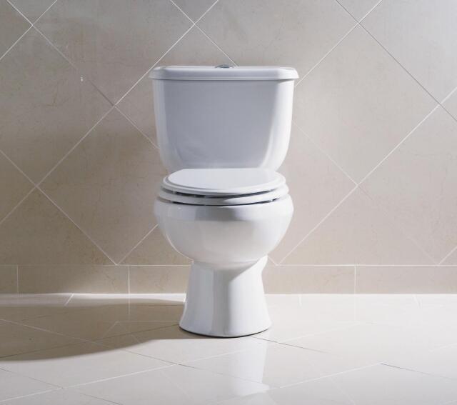 Briggs Conserver Dual-Flush Toilet