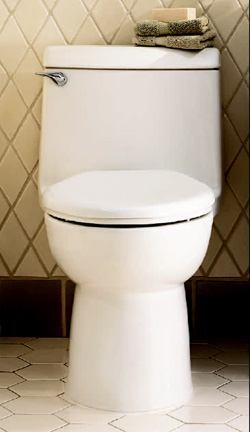 POWER FLUSH: The manufacturer claims that Champion has America's best flushing system. Instead of a standard flapper, the unit has a 3 ½-inch, one-piece flush tower that is short and wide so itstops the leaking, corrosion, and handle jiggling associated with the traditional flapper. It also has a 2 3/8 trap that is fully glazed with no choke points, which virtually eliminates clogging, the company says. It comes in white, bone, and linen. American Standard. 732-980-3000. www.americanstandard-us.com.