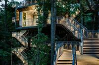 In Detail: Sustainability Treehouse