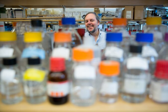 Dr. Stephen J. Elledge - Photo: Bryce Vickmark for The New York Times