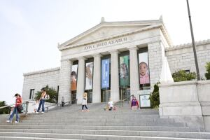 Housed in a historic building, Shedd is one of the world's largest indoor aquariums.