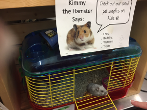 Kimmy the Hamster, a featured pet in residence at Pacific Building Center, Blaine, Wash.