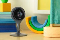 Nest's Next Products, Speculatively