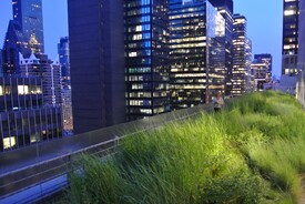 Midtown Manhattan Sky Garden