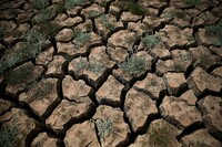 Restrictions Imposed to Curb California Drought