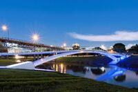 Project Gallery: Phyllis J. Tilley Memorial Pedestrian Bridge