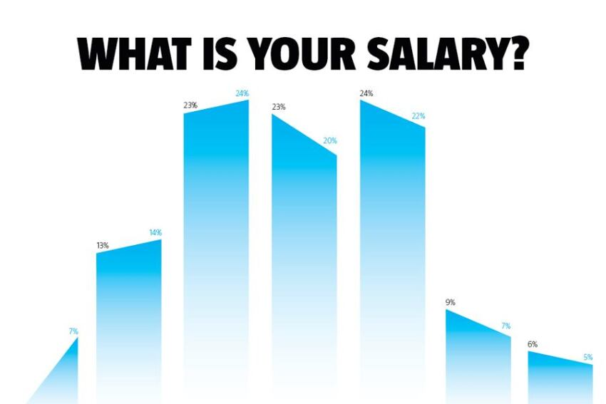 Salary Survey 2010: Less = The New More