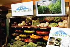 Sky Vegetables
