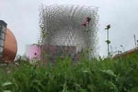Highlights of Milan Expo's First Weekend