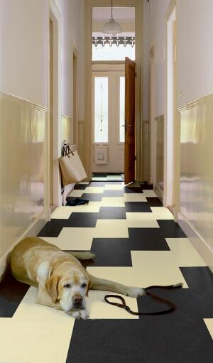 double click   All-natural Marmoleum flooring now comes in click-together panels and squares for quick and easy glueless installation. The cork-backed tiles are available in 12-by-12-inch squares or panels measuring 12 inches wide by 36 inches long. Choose
