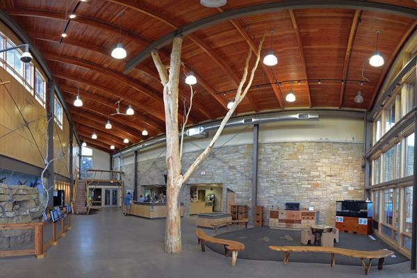 A 26-foot-tall, load-bearing black willow tree replaces a steel column in the atrium of the rennovated Myrick Hixon EcoPark in La Crosse, Wis.