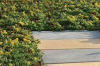 Pavers for roof walkways, patios