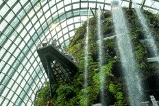Postcard from Singapore: An Inside Look at Green Design in the Tropics