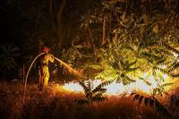 Blue Cut Fire Rages Through 36,000 Acres, Destroys Homes