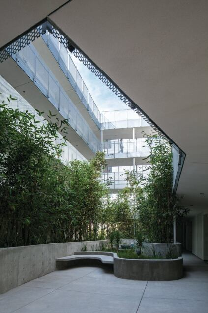 The entry directs residents to a planted central courtyard on the second level, around which all of the residential units are arranged. Poured-concrete planters and benches provide gathering areas for the residents.