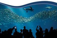 Pool Industry Expo Emphasizes Education