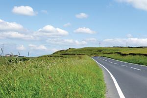 Creating stable and healthy roadsides
