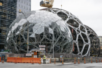 Amazon Adds Treehouses to Seattle Headquarters