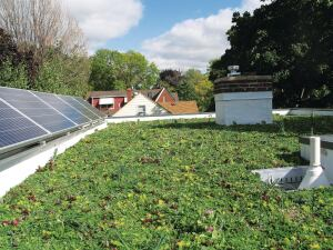 The modular green roof by LiveRoof took root quickly and requires little maintenance. Adjacent to the vegetation, a 1.44-kW PV system generates about one-third of the home's electricity, while two 4-foot-by-8-foot solar hot water panels provide an annual average of 70 percent of the family's hot water.