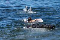 Honoring Aquatics Innovators: Adaptive Lifeguarding