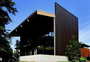 TALL ORDER: The home's corrugated metal siding lays horizontal in front, but turns vertical  toward the back, emphasizing the two-story massing of the elevation facing  the pond.