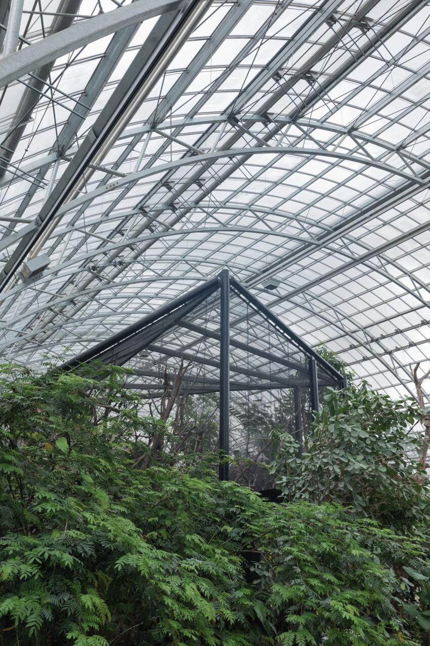 Inside the greenhouse, tropical animals are housed within aviary structures similar to the ones outside.