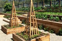 Farm-to-Table Amenities Yield Profits
