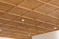 Sustainable Ceiling: WoodTrac Ceiling System