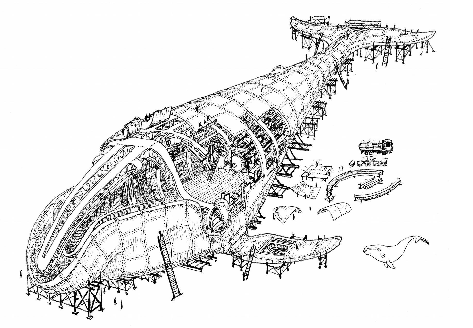 Its A Bird Plane Architecture