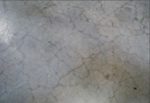 Surface Crazing Concrete Producer Cracking And Crazing