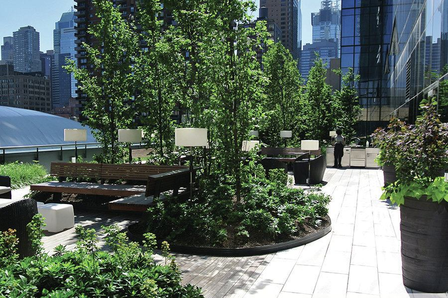 Mima Roof Terrace Commons New York Builder Magazine