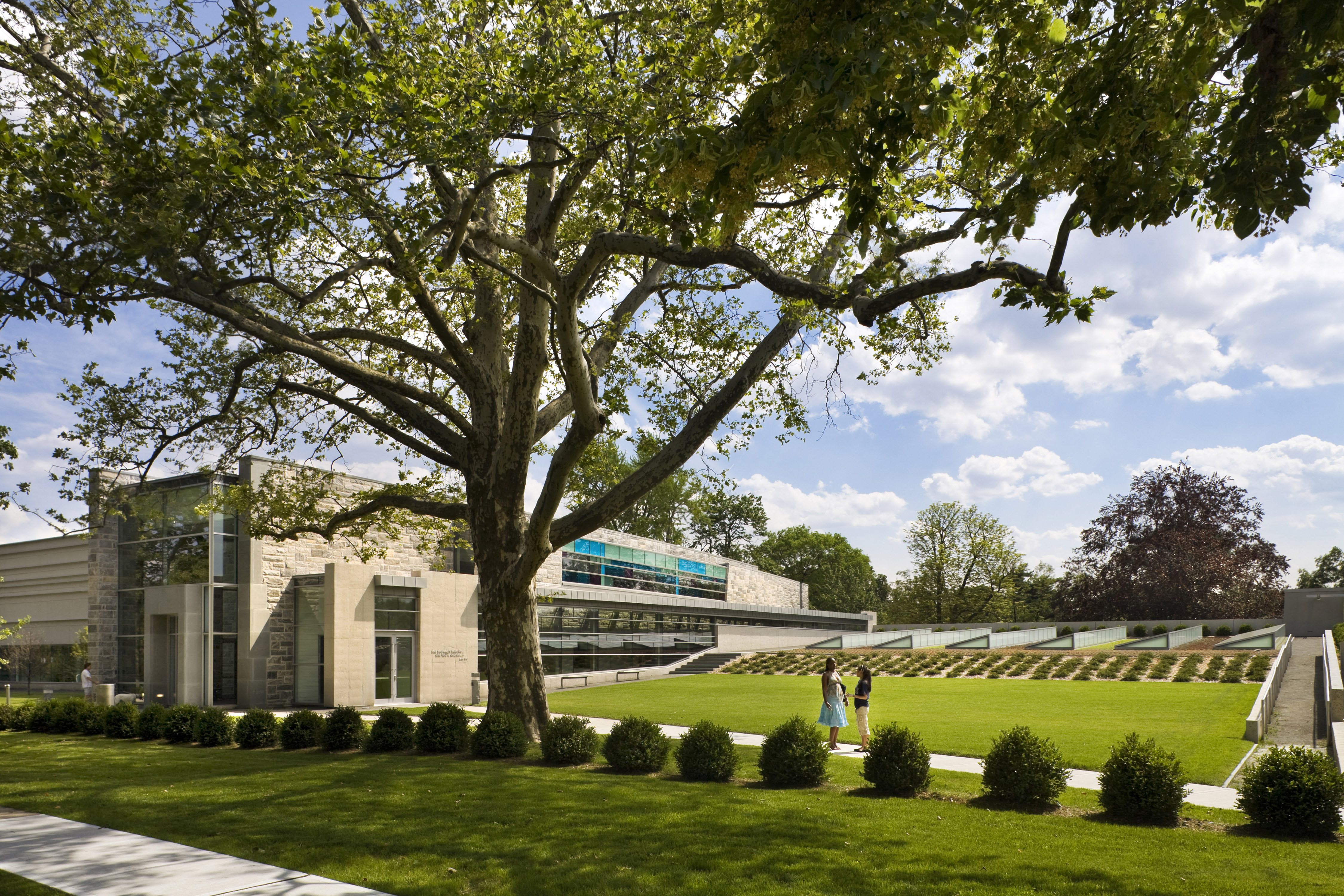 The College Of New Rochelle The Center For Wellness Architect Magazine