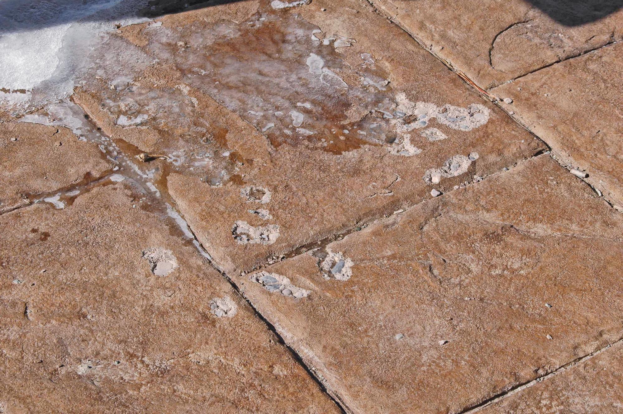 Air Entrained Decorative Concrete Concrete Construction