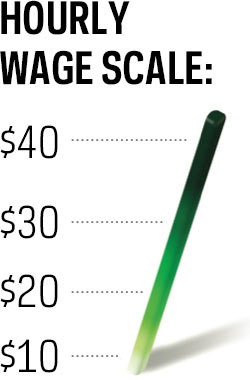 Long Island Carpenters Union Pay Scale
