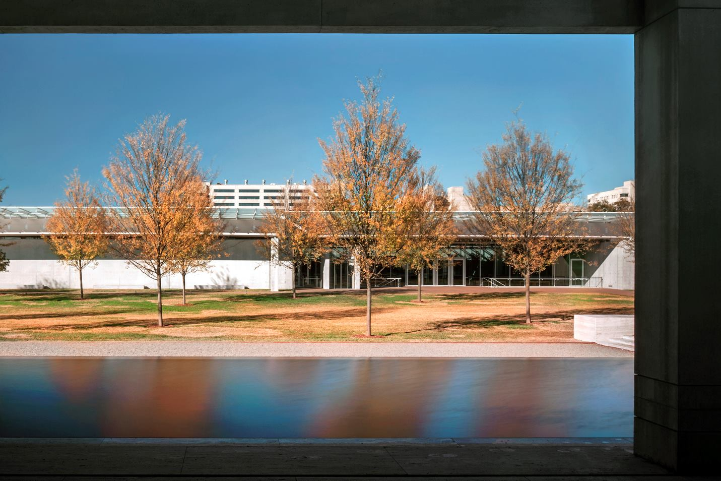 The Renzo Piano Pavilion At The Kimbell Art Museum Photos