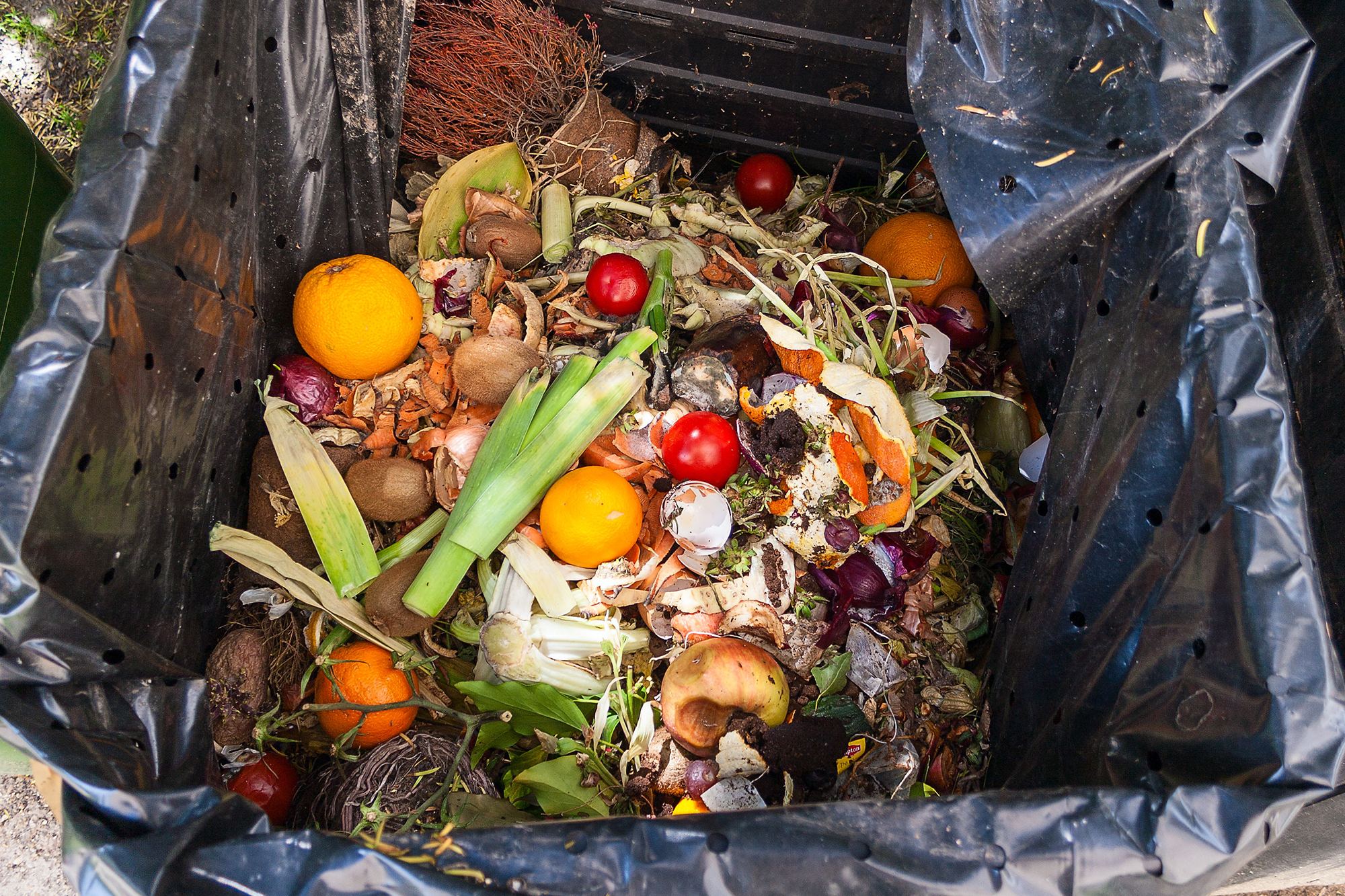 Repurposing Food Waste As Alternative Building Materials Custom Home Magazine