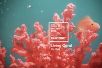 Pantone's Living Coral is the New Millennial Pink
