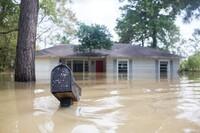Houston's Post-Harvey Reckoning