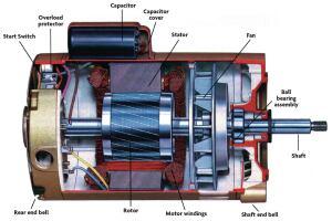 Bearing replacements pool spa news repair pools for Pool pump motors troubleshooting